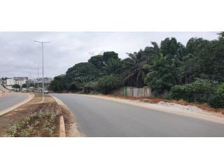 Terrain clôturé 1.5 hectares bordure route abatta