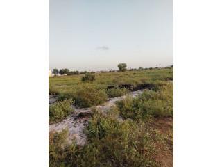 Terrain en vente sur l'autoroute Bassam