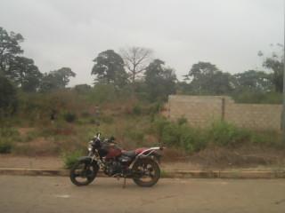 Terrain en vent a yamoussoukro cite des élus de yamoussoukro