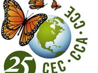 RECRUTEMENT ADMINISTRATIF CCE 2020