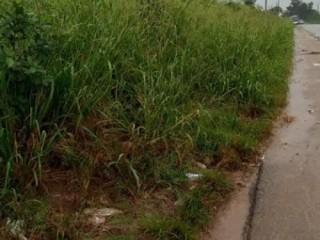 Songon kassemblé en bordure de bitume vente terrain 5ha avec ACD.