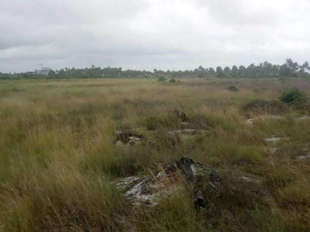terrain-de-10-ha-avec-acd-en-vente-en-bordure-de-lautoroute-de-bassam-big-0