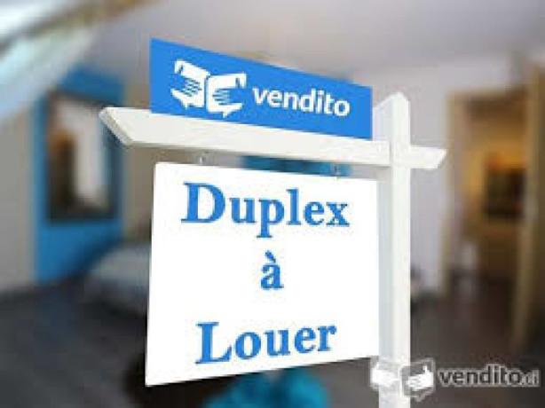 duplex-de-5-pieces-en-location-a-la-riviera-3-cite-selmer-big-0