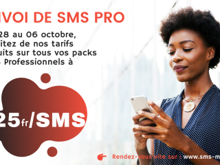 OFFRE FLASH SMS PROFESSIONNEL ( sms pro )