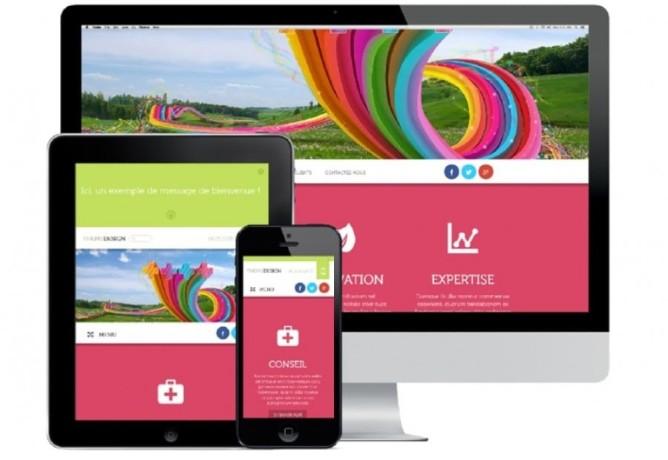 conception-des-sites-web-pro-responsive-a-moindre-cout-big-1