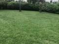 cocody-golf4-beverly-hills-cote-ddrogba-vente-duplex-9pieces-sur-3200m2acd-small-2