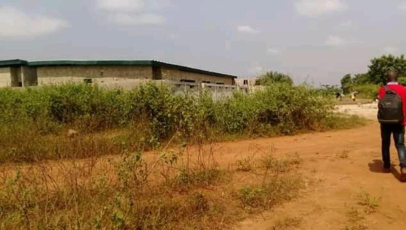 terrain-en-vente-a-yamoussoukro-avec-un-acd-big-0