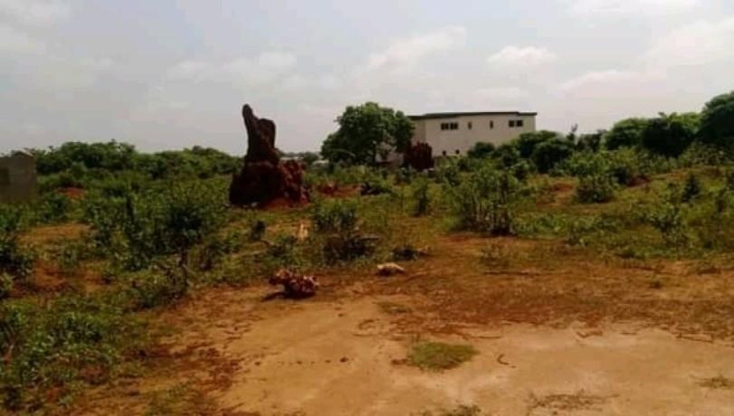 terrain-en-vente-a-yamoussoukro-avec-un-acd-big-1