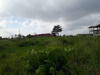 Cocody Golf4 beverlly Hills vente terrain nu 8000m2 avec ACD