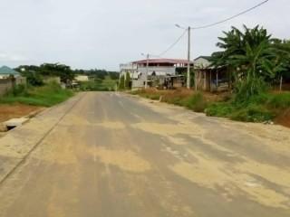 Cocody abatta oribat bordure bitume vente terrain 600m2